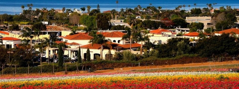 carlsbad-moving